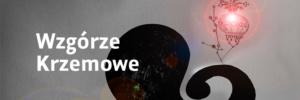 wzgorze_krzemowe_wyr_na_www